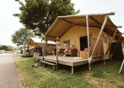 tcs camping festival